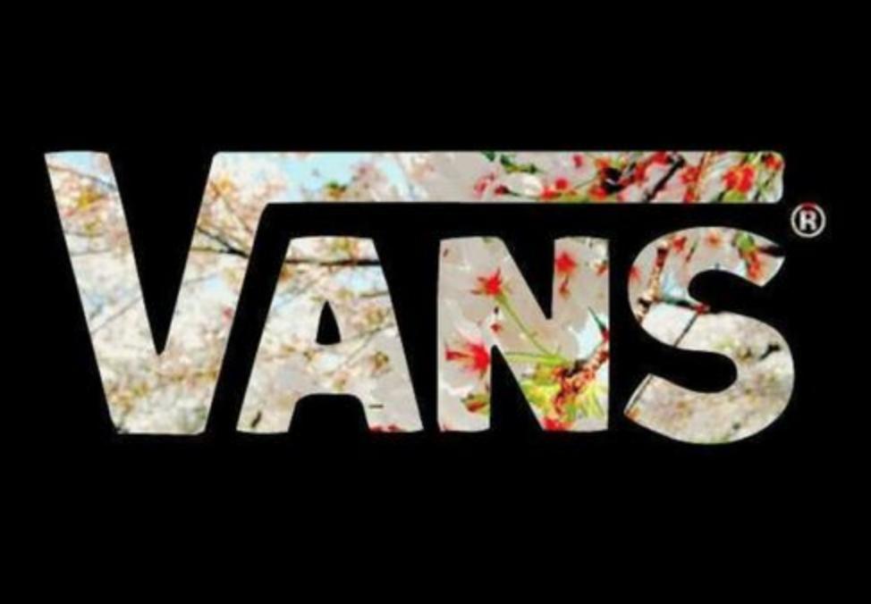 Visuel Vans Da Shoes